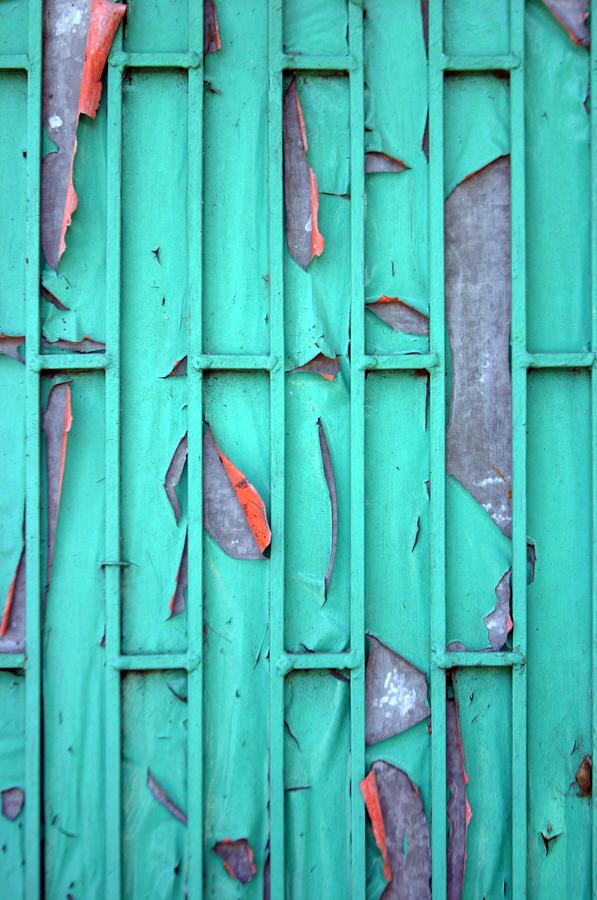 Photographer Photograph - Door by Jez C Self