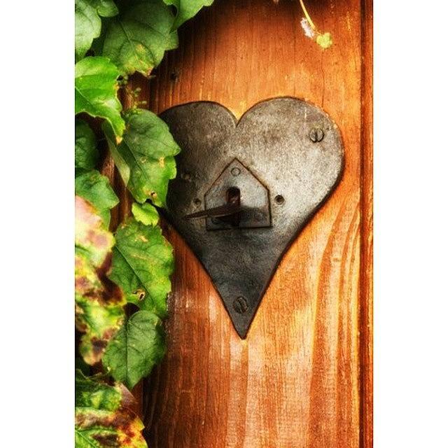 Beautiful Photograph - Door To My Heart by Georgia Fowler