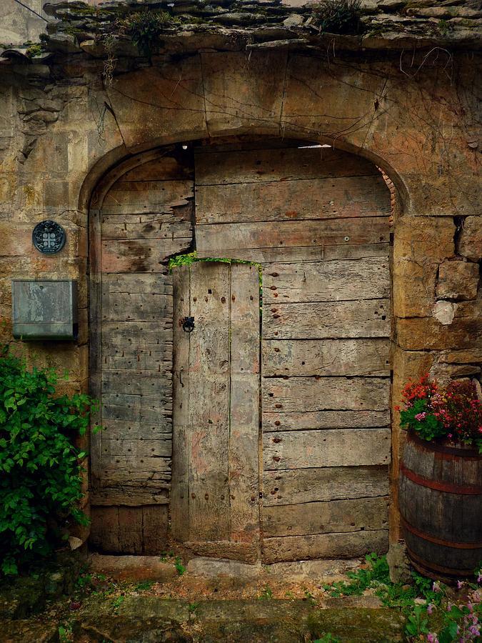 Door To The Secret Garden Photograph by Studio Yuki
