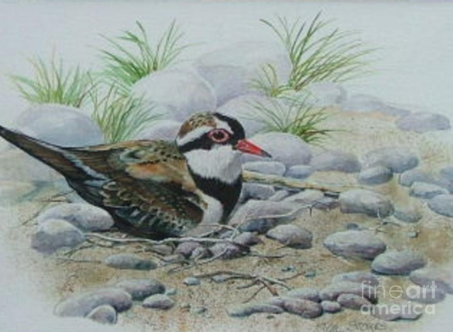 Pebbles Painting - Dotterol by Val Stokes