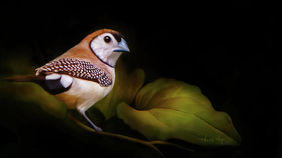 Double Barred Finch Artwork 8948 Painting