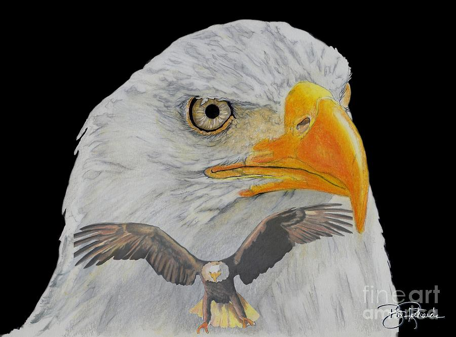 Eagle Drawing - Double Eagle by Bill Richards