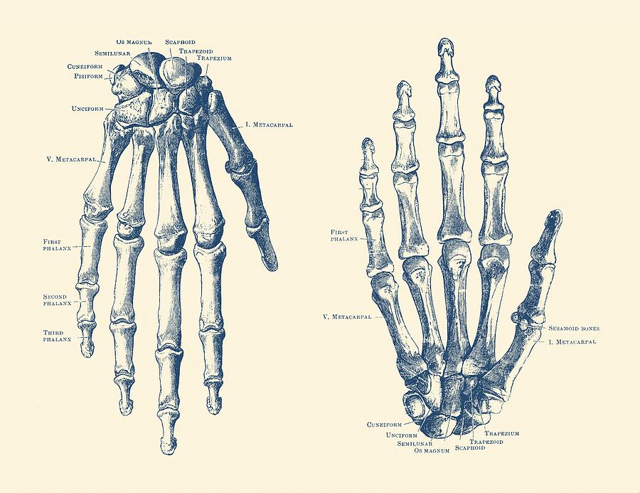 Vintage Hand Diagram Of Joints Block And Schematic Diagrams