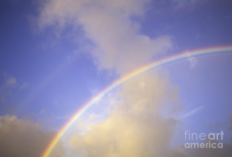 Above Photograph - Double Rainbows by Carl Shaneff - Printscapes
