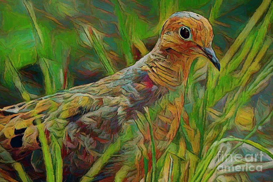 Dove Photograph - Dove Painterly by Deborah Benoit