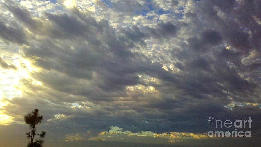 Sunrise Photograph - Down Blanket by Tracy Evans