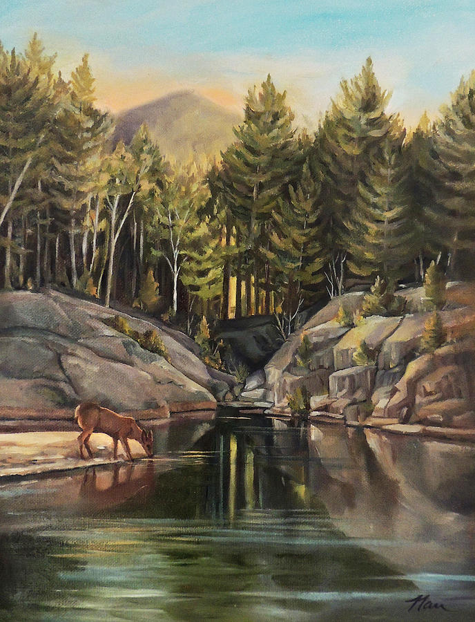 Down by the Pemigewasset River by Nancy Griswold