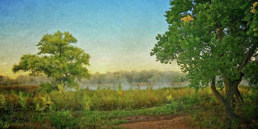 Nature Photograph - Down by the River, Rio Grande Bosque, New Mexico by Zayne Diamond Photographic