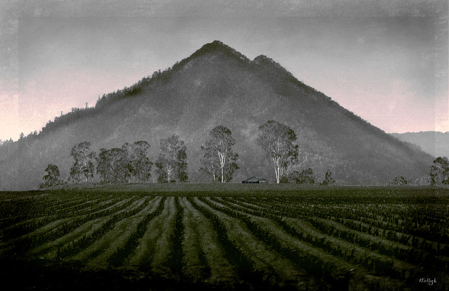 Landscapes Photograph - Down From The Mountain by Holly Kempe