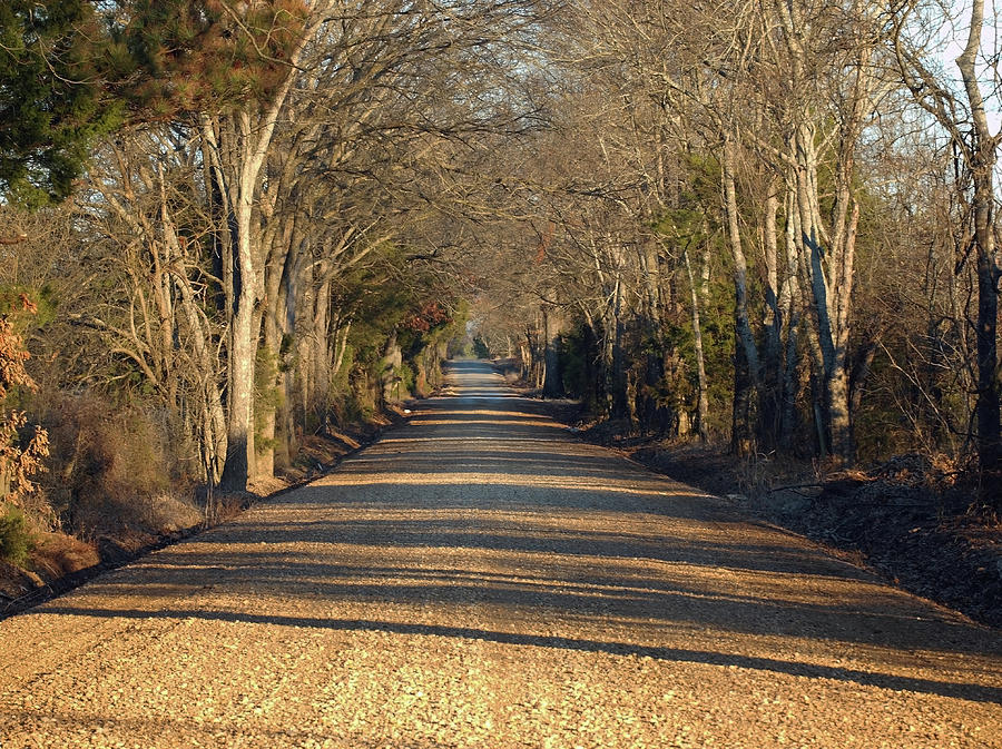 Roads Photograph - Down The Gravel Road by Diane Luke