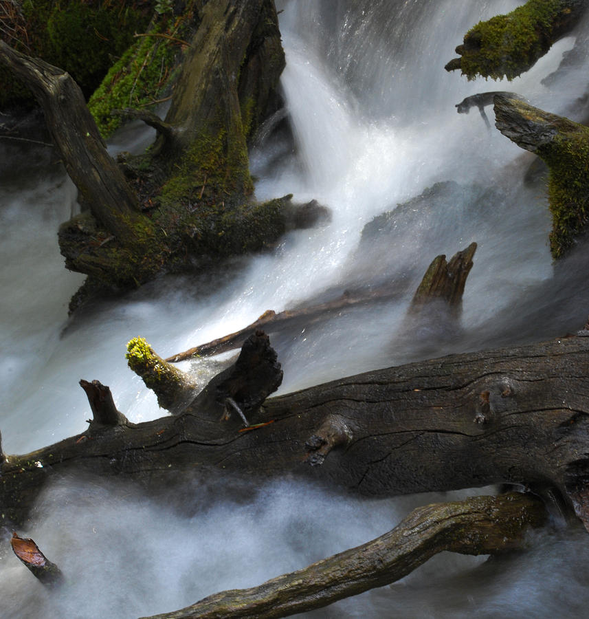 River Photograph - Downstream by Matthew Fredricey