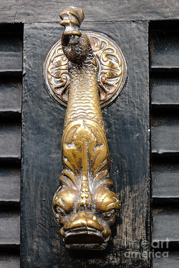 Door Knocker Photograph   Dragon Door Knocker By Dawna Moore Photography