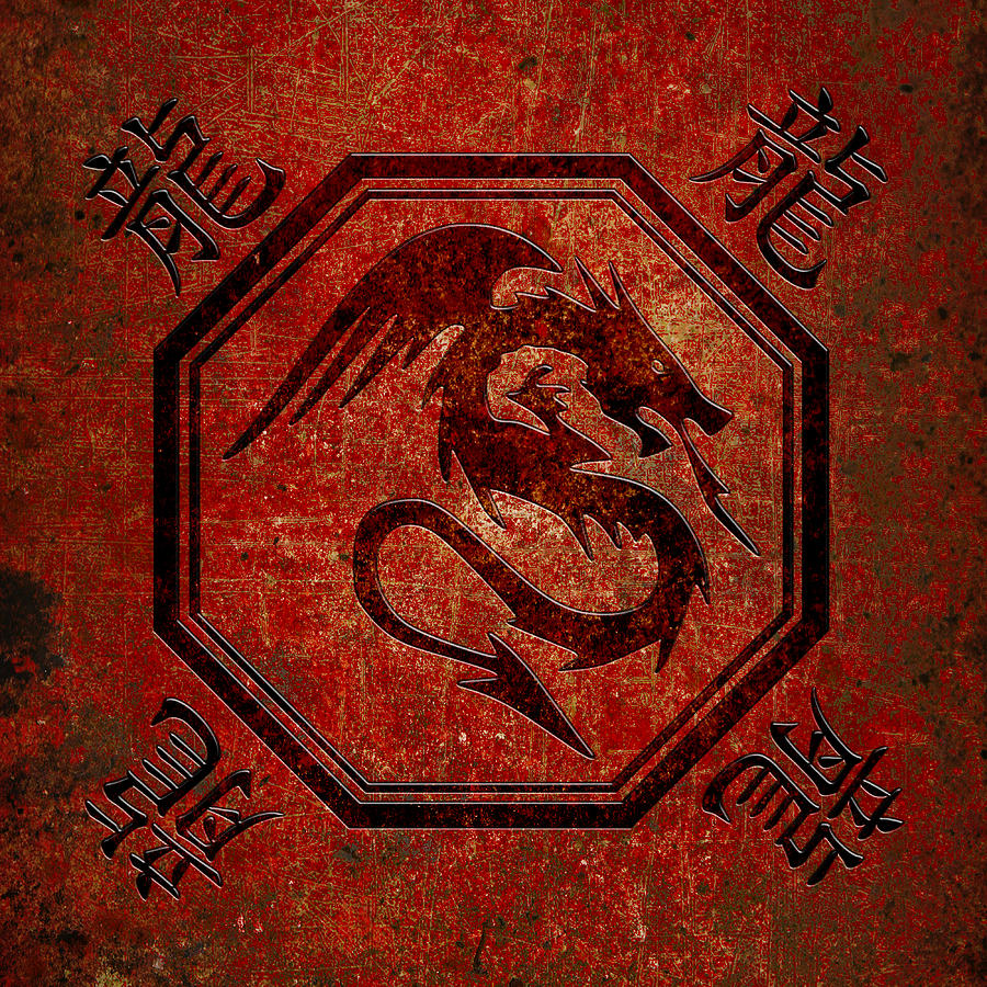 Dragon In An Octagon Frame With Chinese Dragon Characters Red Tint  by Fred Bertheas