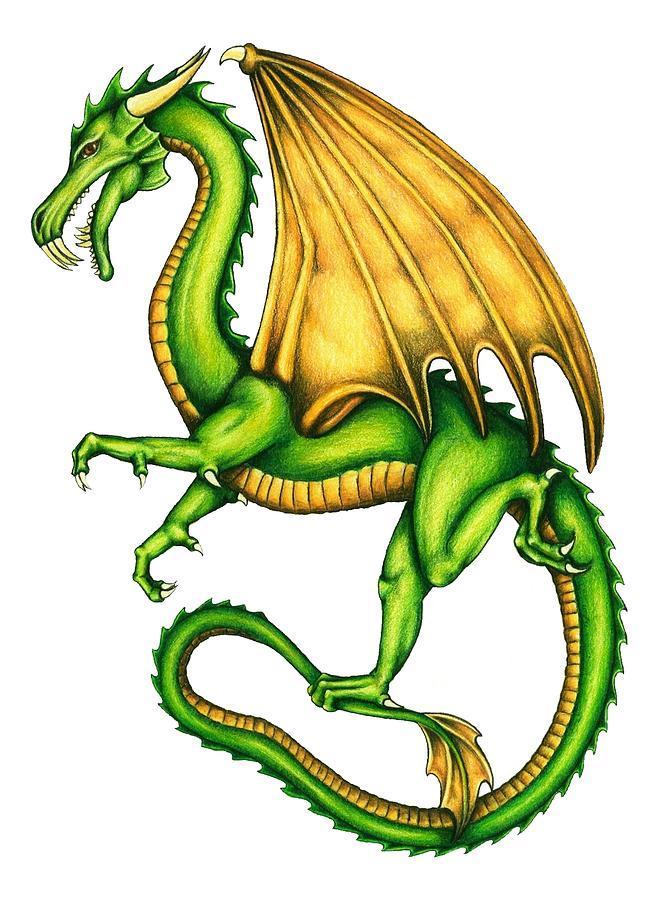 Dragon Drawing by Sheryl Unwin