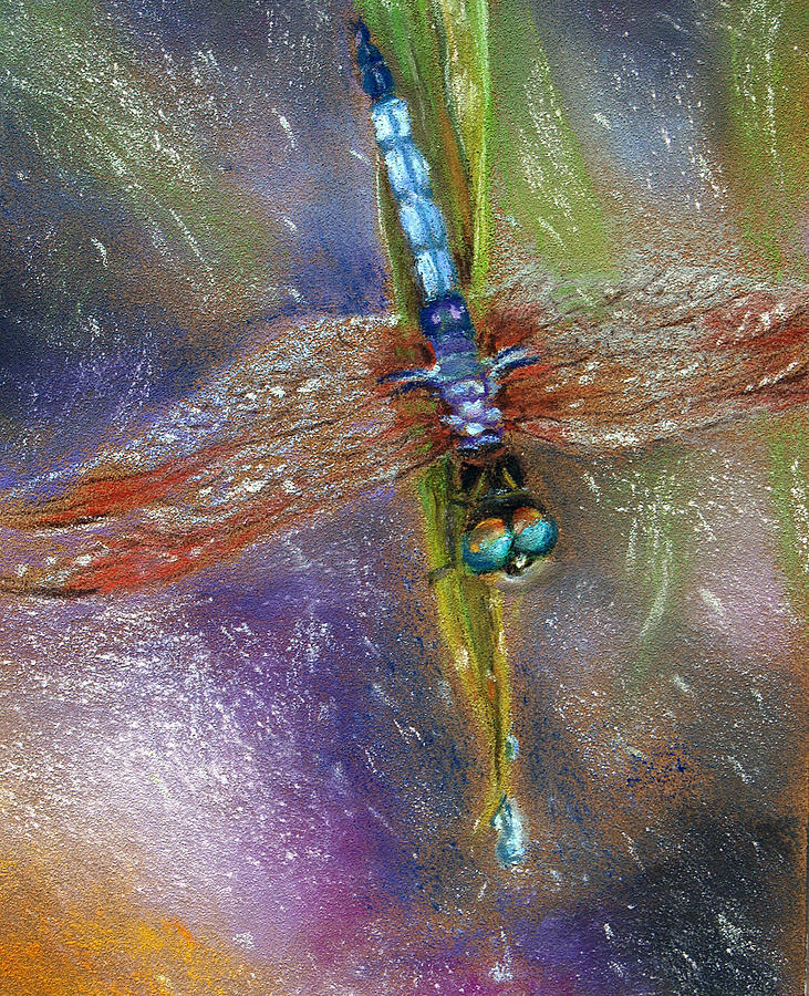 Dragonfly Pastel - Dragonfly In The Rain by Susan Jenkins
