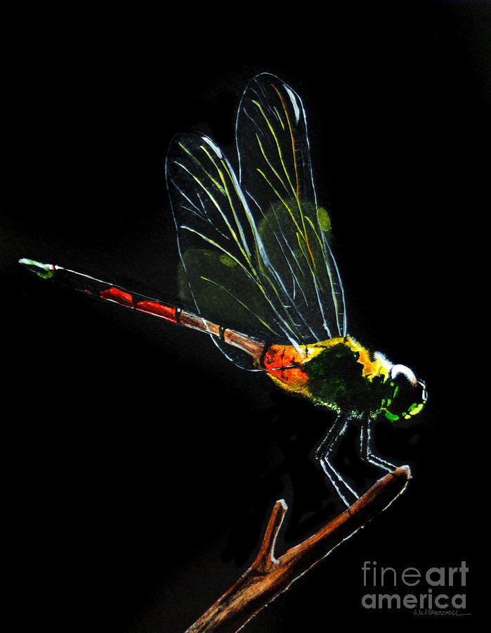 Dragonfly Painting - Dragonfly by Monica Carrell