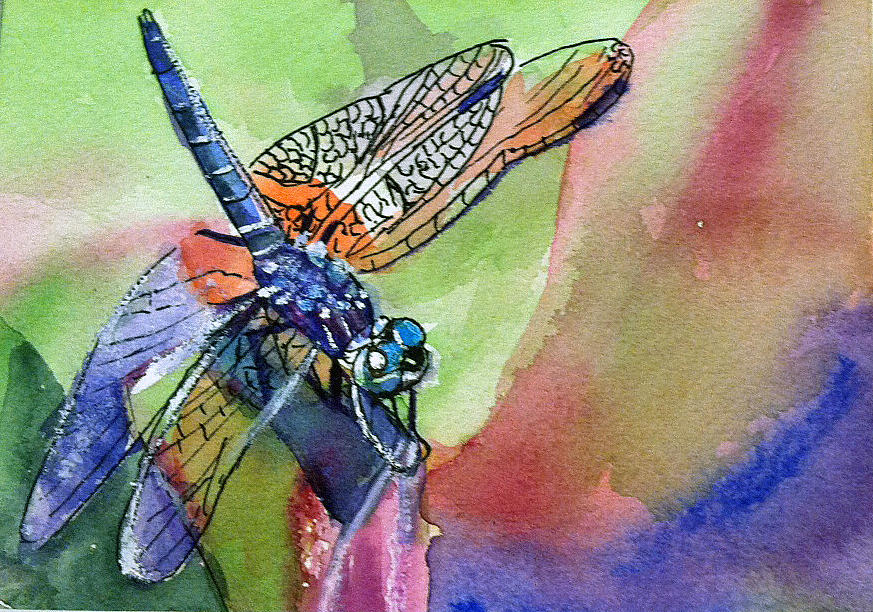 Dragonfly Painting - Dragonfly of Many Colors by Lynne Atwood