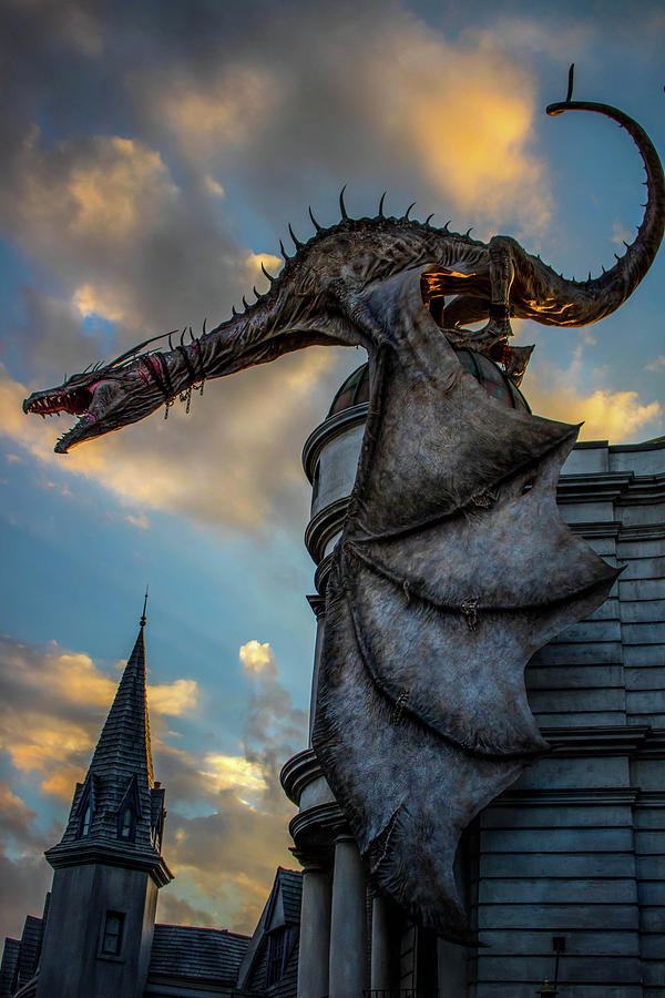 Harry Potter Photograph - Dragons Glory  by Luis Rosario