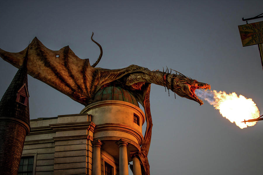 Harry Potter Photograph - Dragons Revenge by Luis Rosario