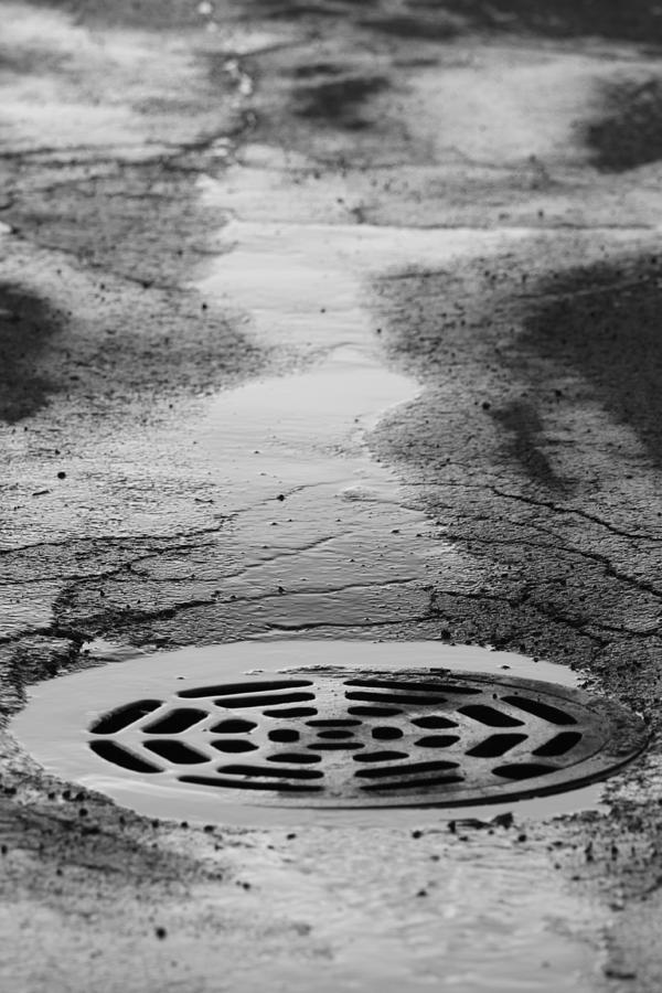 Drain Photograph - Drained by Lauri Novak