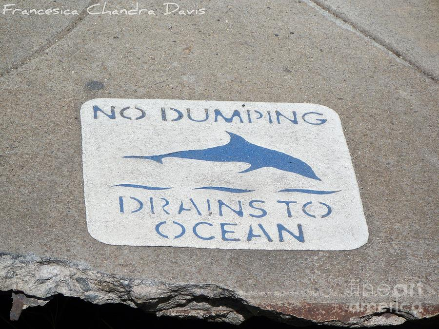 Drains To Ocean Photograph - Drains To Ocean by Sacred  Muse