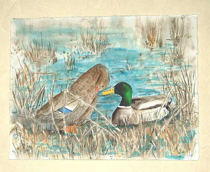 Mallards Painting - Drake And Hen by Diane Ziemski