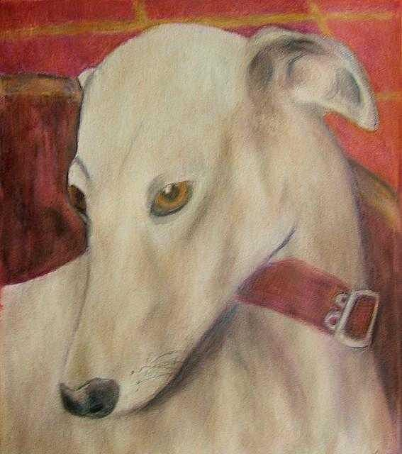 Dog Drawing - Drama Queen by Kelli Maier