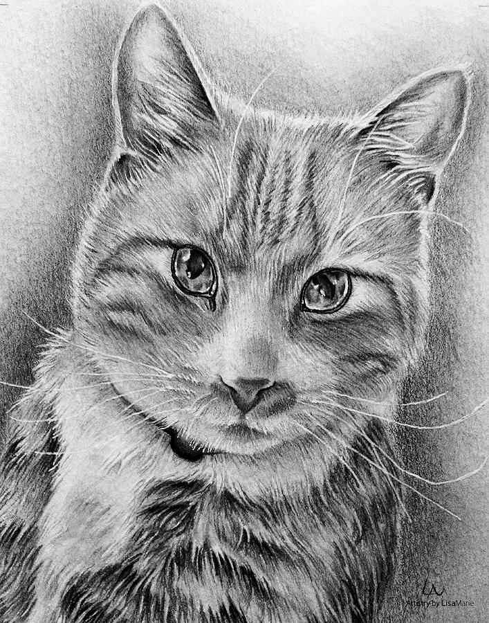 Cat Mom Drawing - Drawing Of A Cat In Black And White by Lisa Marie Szkolnik