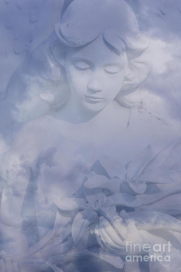Dream Angel by Malanda Warner