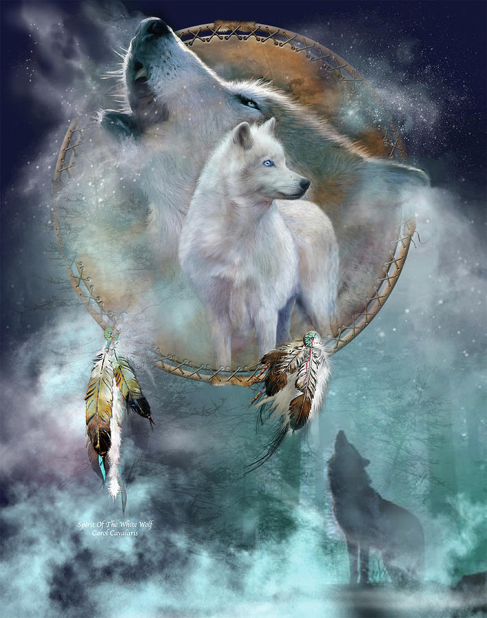 Dream Catcher - Spirit Of The White Wolf by Carol Cavalaris