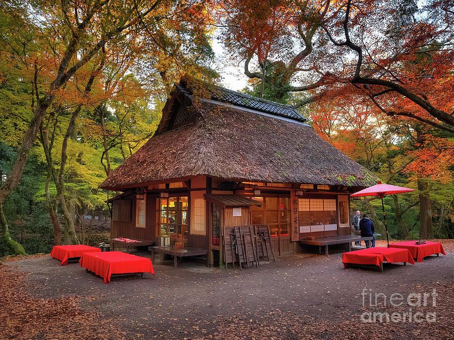 Autumn Colors Photograph - Dream like thatched house in the woods near Mizuya Shrine Nara, Japan by Mark Carnaby