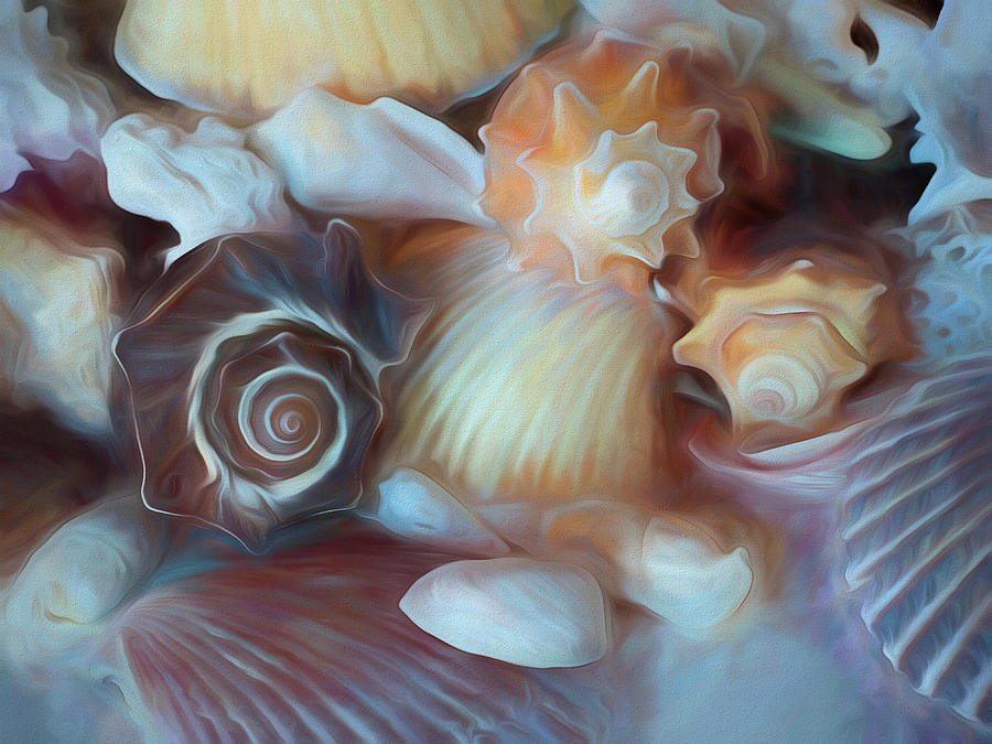 Dream of Seashells by Lynda Lehmann