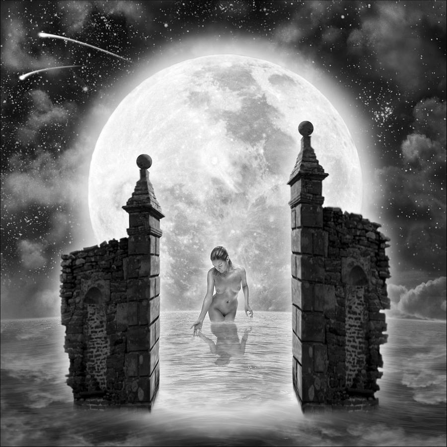 Dreamcatcher Digital Art by Vincent O Byrne