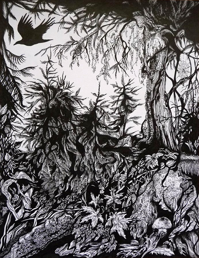 Pen And Ink Drawing - Dreaming Alaska.part One by Anna  Duyunova