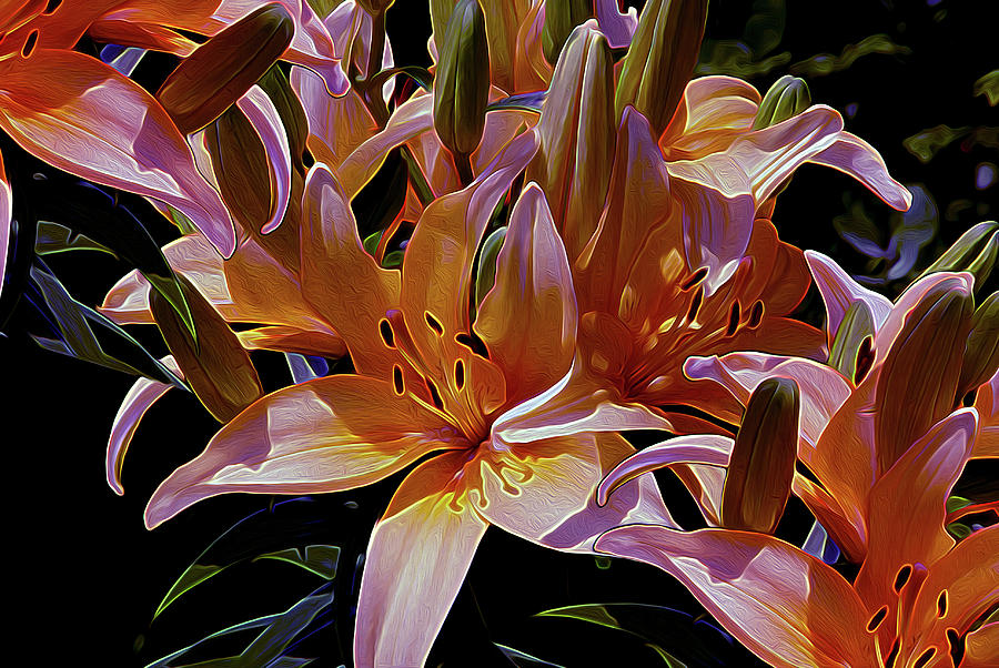 Lily Mixed Media - Dreaming Of Lilies 5 by Lynda Lehmann