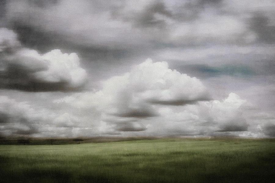 Dreamland by Paul Bartell