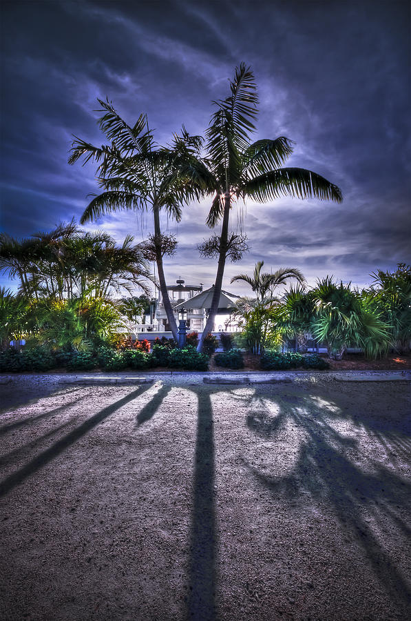 Boca Grande Photograph - Dreamscapes by Evelina Kremsdorf