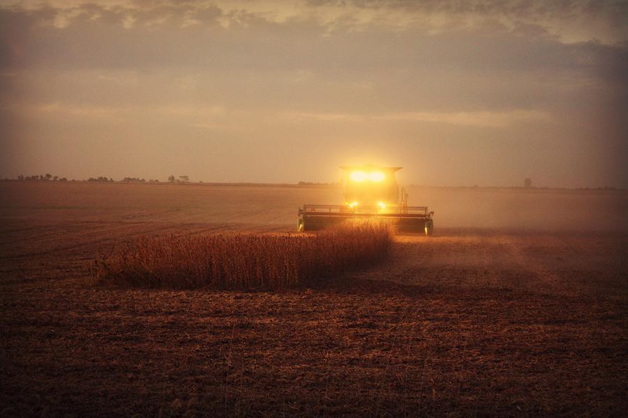 Corn Harvest Photograph - Dreamy Corn Harvest by Goldie Pierce