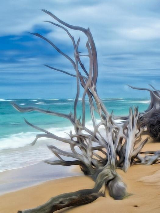 Dreamy Driftwood Photograph by Mele Jean Willow