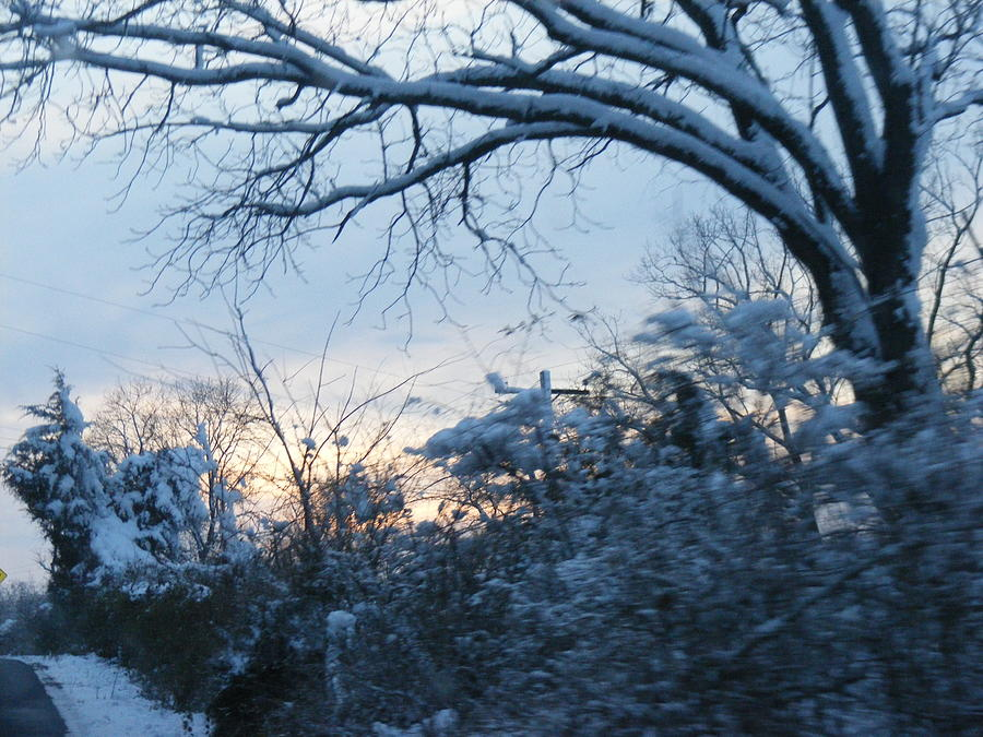 Snow Photograph - Dreamy by James and Vickie Rankin