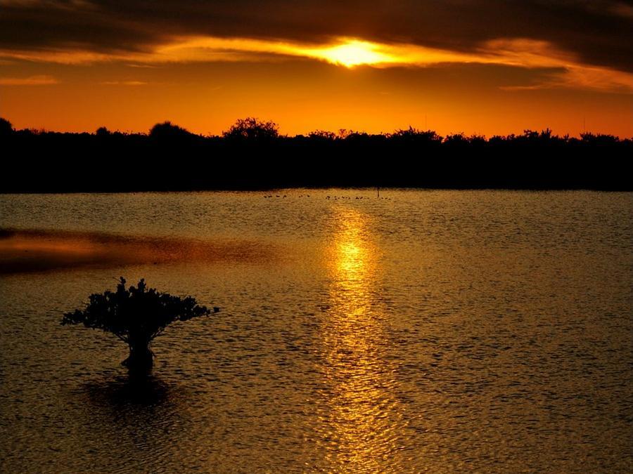 Sunset Photograph - Dreamy Sunset by Jennifer A Garcia