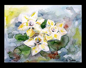 Yellow Painting - Drenched Daffodils Sold by Amanda  Sanford