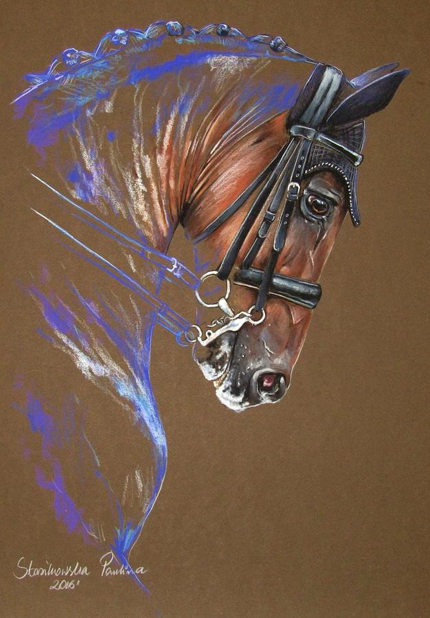 Dressage Horse Painting By Paulina Stasikowska