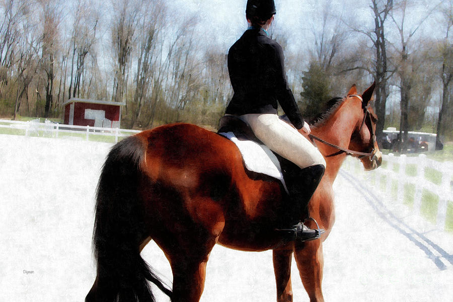 Dressage Photograph - Dressage In Waiting  by Steven Digman