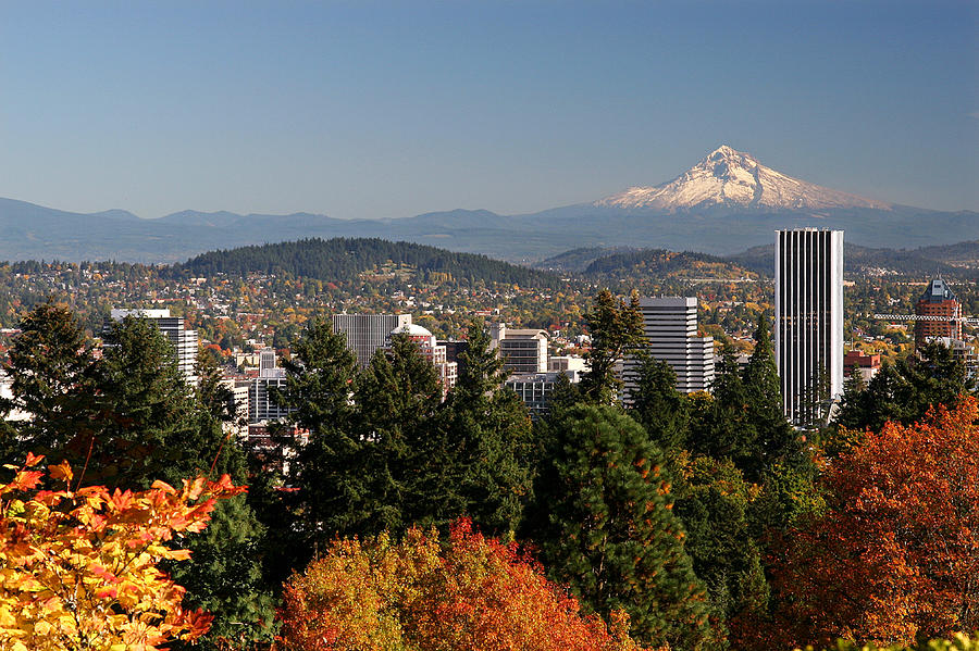 Mt Hood Photograph - Dressed In Fall Colors by Wes and Dotty Weber