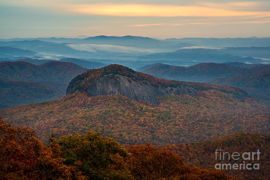Looking Glass Rock Photograph - Dressed In Gold. by Itai Minovitz