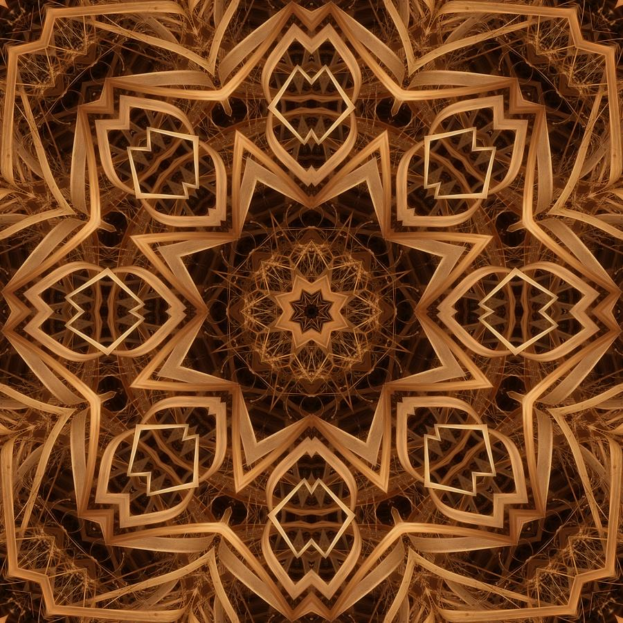 Kaleidoscope Digital Art - Dried Grass Mandala by Lyle Hatch