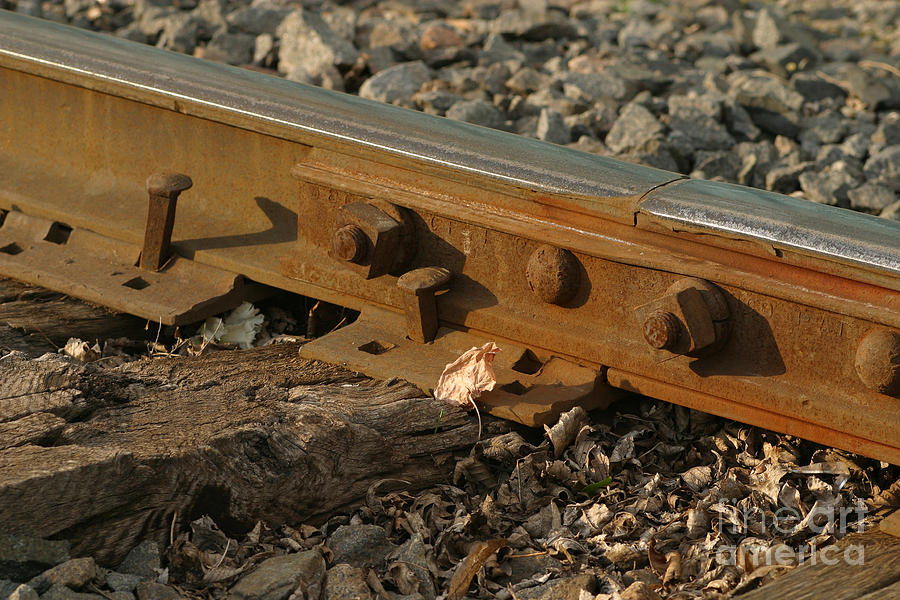 Railroad Photograph - Dried Leaf By Track by Steve Augustin