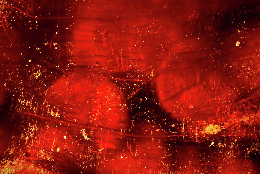 Chili Pepper Photograph - Dried Red Pepper by  Onyonet  Photo Studios