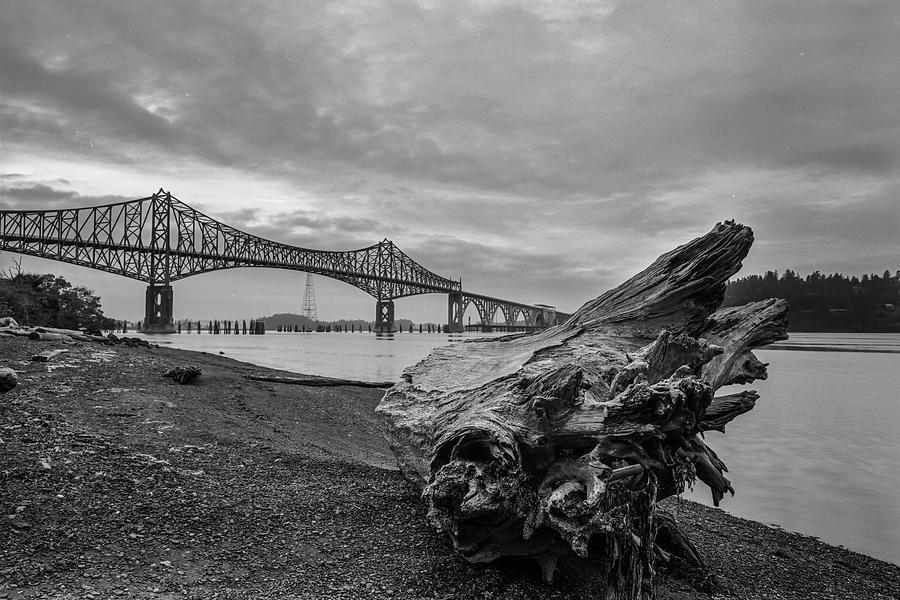 Drift Stump and Bridge by HW Kateley